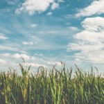 Why it's time to embrace digital farming